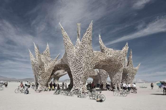 Burning Man 2009 1 Burning Man 2009