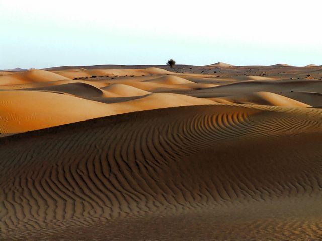 7 al maha An Arabian Desert Experience