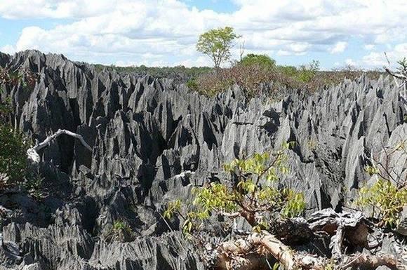 madagascar rocks 1 Madagascar Rocks